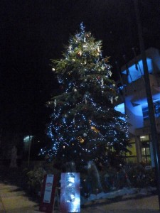Gelungener Kulturaustausch: Auch Vitrolles hat jetzt einen Weihnachtsbaum auf dem Platz vor dem Rathaus